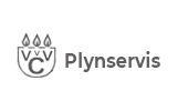 Plynservis